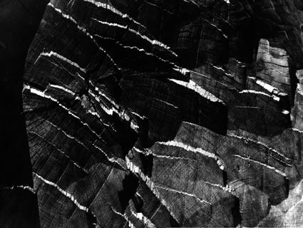 Architettura della materia, fotografia di Ferruccio Ferroni (1953)