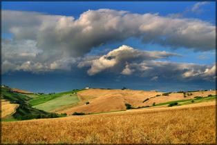 Gold - Campagna marchigiana con nuvole